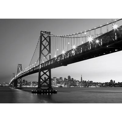 Fotomural San Francisco 366x254