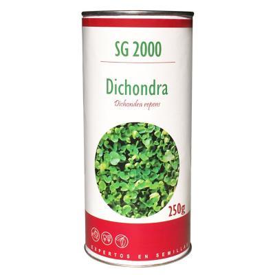 Semilla césped dichondra 250 grs