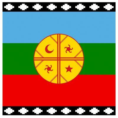 Bandera mapuche 60x100 cm