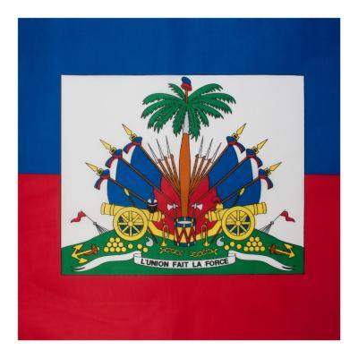 Bandera haiti 90x150 cm