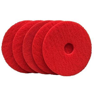 "Disco limpia piso PAD 5 unidades rojo 17"""