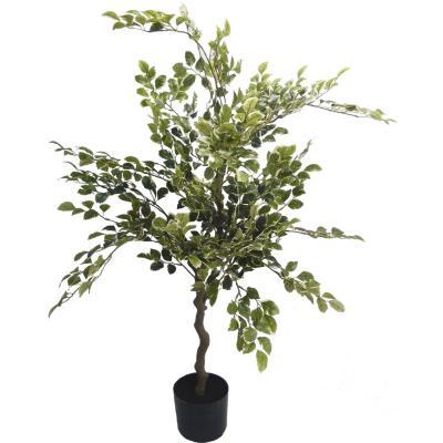 Planta abedul 1,2 m verde