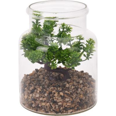 Bonsai en frasco 19 cm