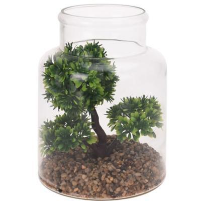 Bonsai en frasco 24 cm