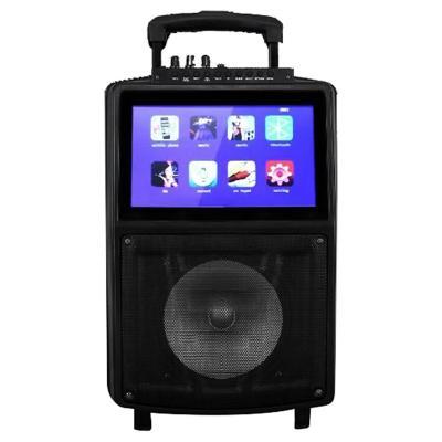 Parlante karaoke con pantalla