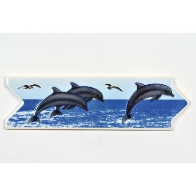 Listel delfín 8x25 cm