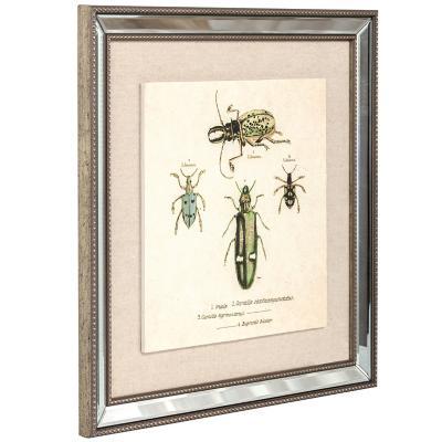 Cuadro Escarabajos 46x46 cm