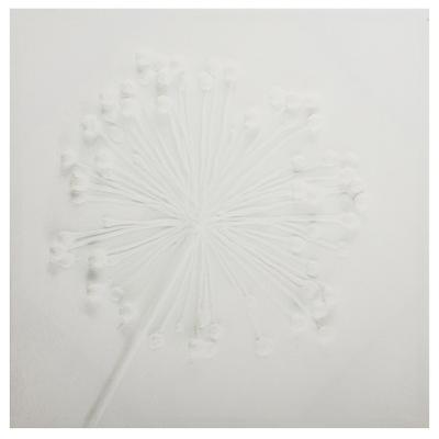 Canvas Flor blanca 50x50 cm