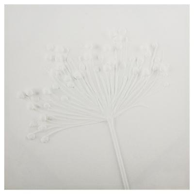 Canvas Flor blanca 2 50x50 cm
