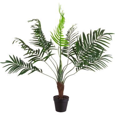 Planta palmera 70 cm