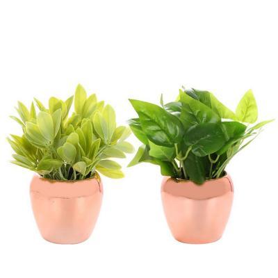 Set 2 plantas artificiales 20 cm