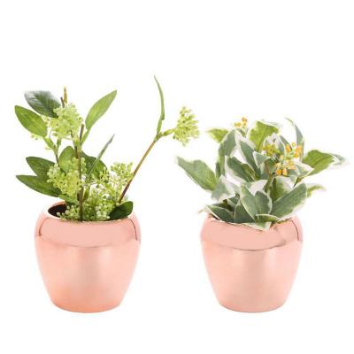 Set 2 plantas artificiales 20 cm
