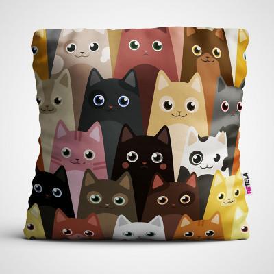 Cojin 45x45 cm ilustración gatitos