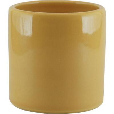 Macetero cactus cerámica 9x9 cm mostaza