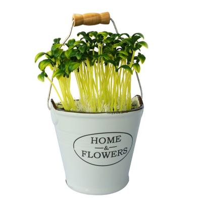 Planta artificial topiari maceta plástico 20 cm blanco