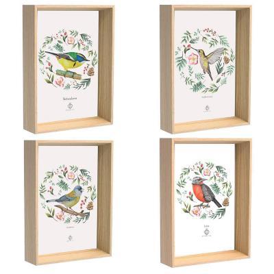 Cuadros 4 postales aves de chile 10x15 cm