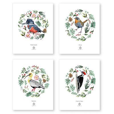 Set 4 láminas aves de chile