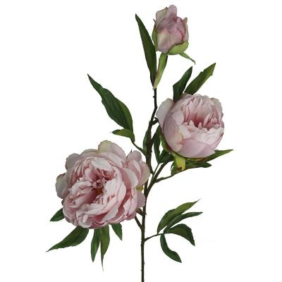 Vara Peonia Silv 74 cm rosada