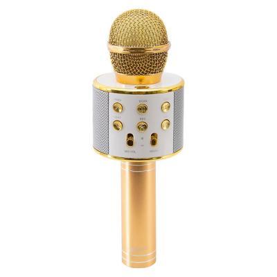 Microfono karaoke usb/micro/ sd dorado