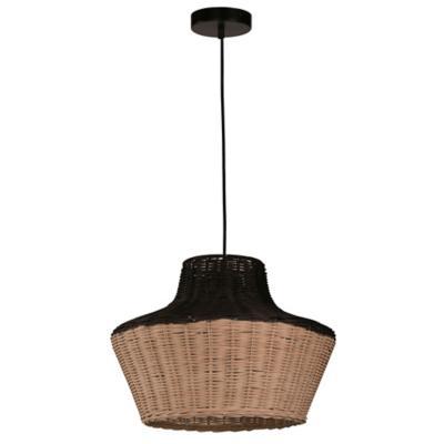 Lámpara techo negro 1 luz E27