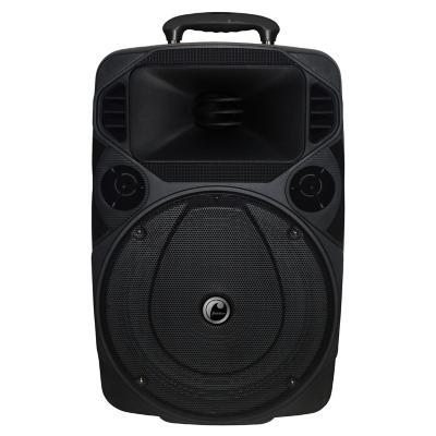 "Parlante karaoke 8"" BT/FM/USB"
