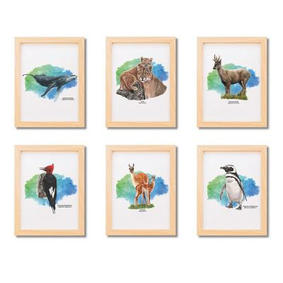 Set 6 postales Patagonia 25x30 cm