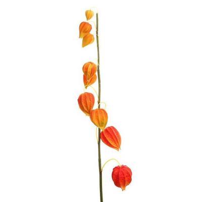 Vara artificial Fisalis 105 cm