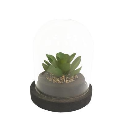 Planta Decorativa Artificial Suculenta Cupula
