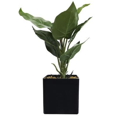 Planta Decorativa Artificial Alocasia Maceta Negra
