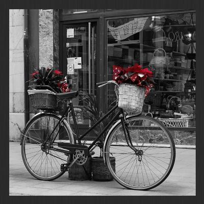 Cuadro Bastidor + cuadro bicicleta flores rojas  60x60 cm
