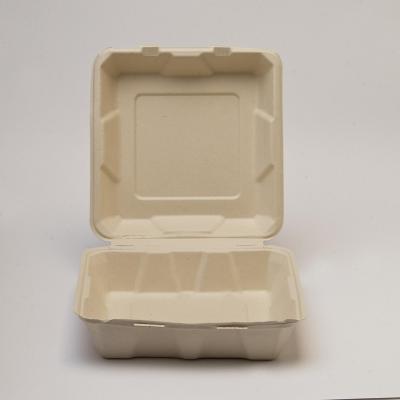 50 Almejas de 950 ml Paja de Trigo 5x20x20 cm