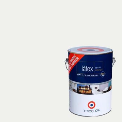 Pintura látex blanco invierno 1 gl