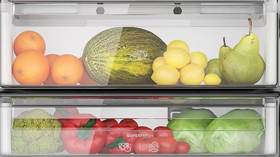 Cajón SuperFresh con el refrigerador Frost Free Bottom Freezer DB60S 322L