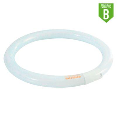 Foco Tubo Fluorescente Circular G10 32W Luz Blanca