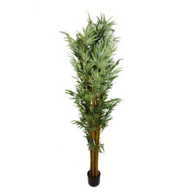 New Bambú 182 cm