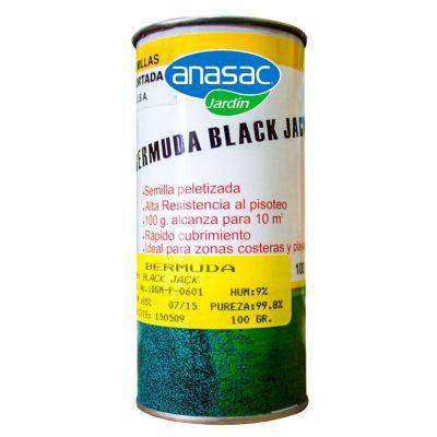 Bermuda Black Jack 100gr