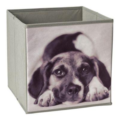 Caja perro vista  27x28x27cm
