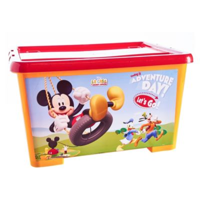Caja N°35 Mickey Mouse Navidad 28L