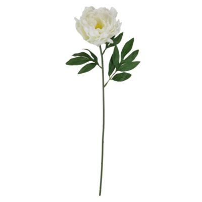 Vara peonia blanca 63cm