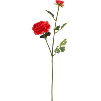 Vara ranun rojo 54cm