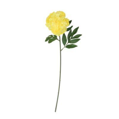 Vara peonia amarilla 63.5cm