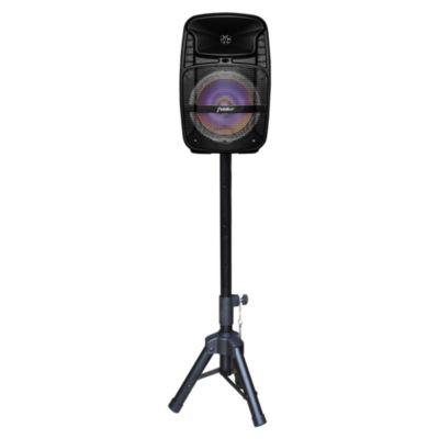 "Parlante Karaoke 8"" con Pedestal"