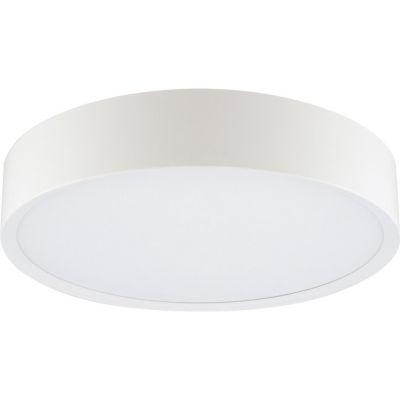 Plafón LED Anillo Luz Cálida 30 cm Blanco