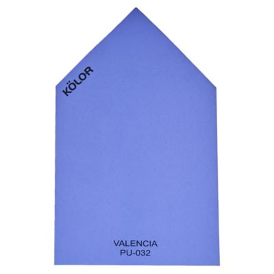 Chip Valencia PU-032