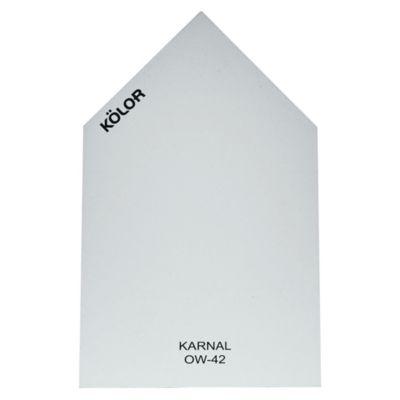 Chip Karnal OW-42