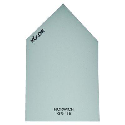 Chip Norwich GR-118