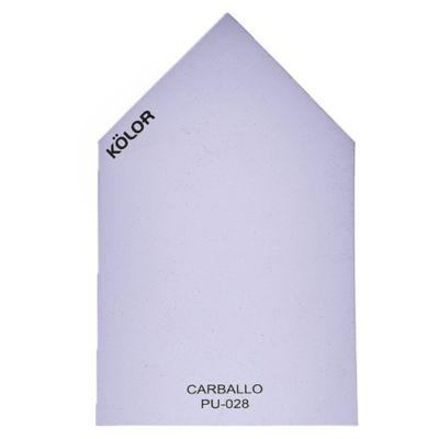 Chip Carballo PU-028