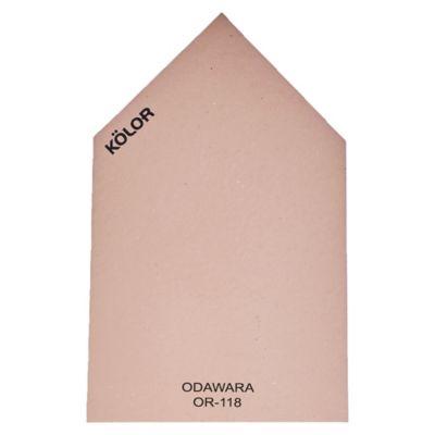 Chip Odawara OR-118