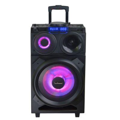 Parlante Portátil con Mezclador DJ 10''