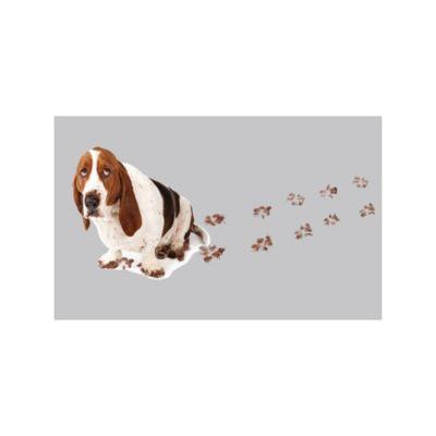 Limp Dog Pasos 50x80cm